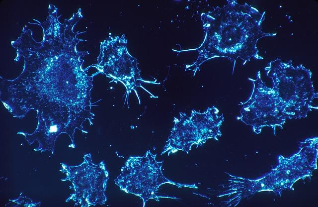 がん細胞イメージ