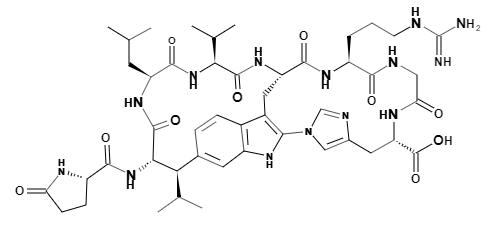 Moloidin