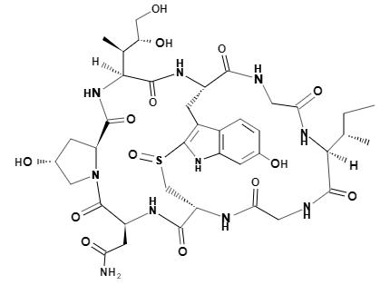 α-amanitin