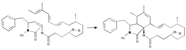分子内Diels-Alder反応