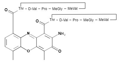 アクチノマイシンD