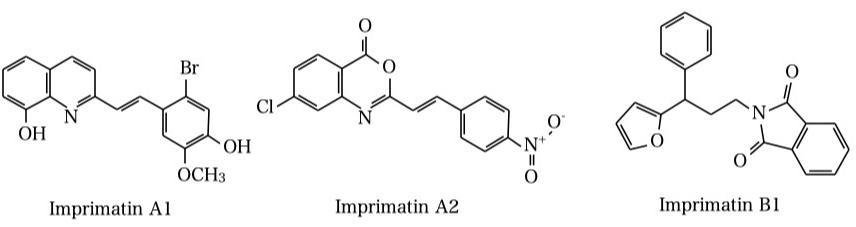 インプリマチン