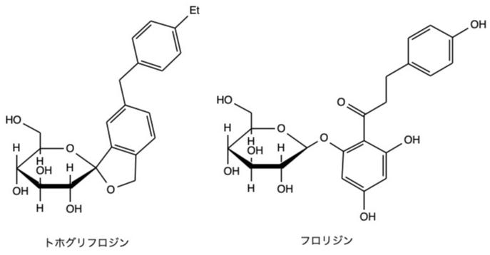 トホグリフロジン