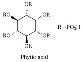 フィチン酸