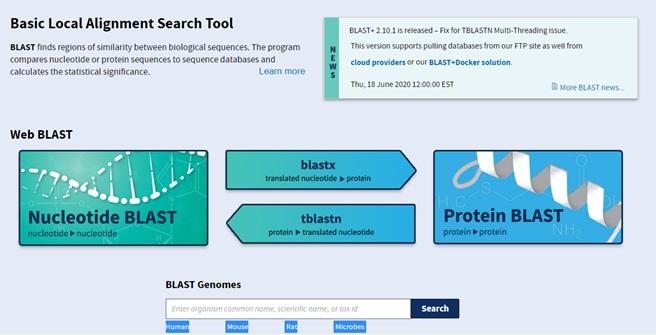 NCBI BLAST