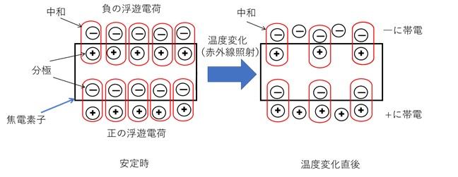焦電素子の原理