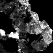 高分子の結晶化メカニズムと解析ノウハウ【提携セミナー】