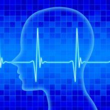 脳波計測技術の基礎と実践【提携セミナー】