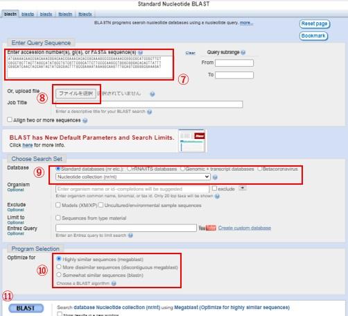Nucleotide BLASTの検索方法