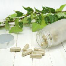 毒性発現の予測/低減/評価のための非臨床研究〜薬物性肝障害(DILI)を中心として〜【提携セミナー】