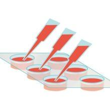 バイオマテリアルの基礎と細胞培養基材への展開【提携セミナー】