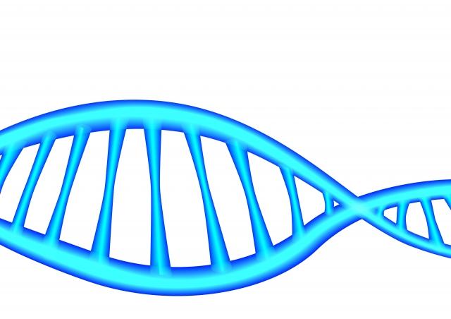遺伝子治療薬