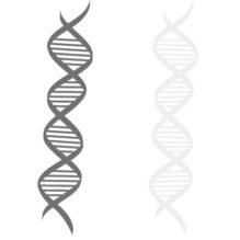 エラストマーの高性能・高機能化に向けた分子設計・構造設計【提携セミナー】