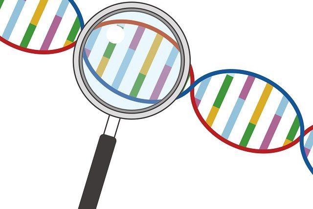 【基礎からわかるバイオ医薬品】核酸医薬の種類と改良技術(核酸修飾技術、DDS)