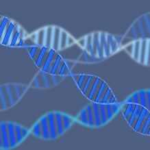 <核酸医薬品開発入門編>核酸医薬の基礎、研究開発動向からDDS技術の応用まで【提携セミナー】