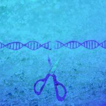 遺伝子・細胞治療におけるウイルスベクターの製造技術/品質管理と安全性・品質評価【提携セミナー】