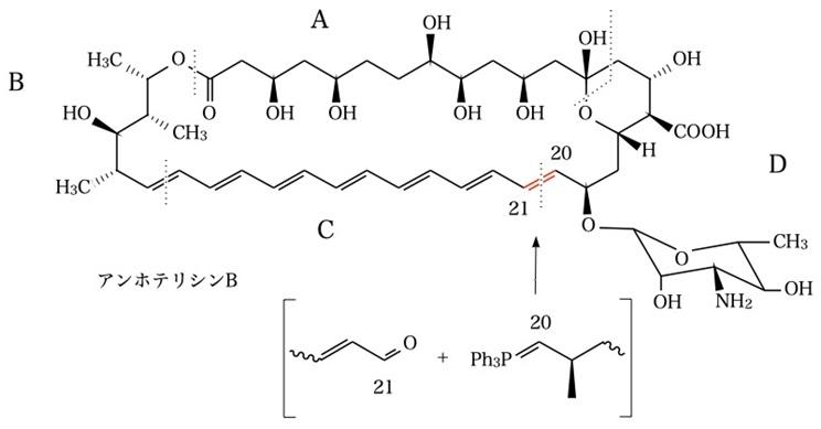 アンホテリシンB