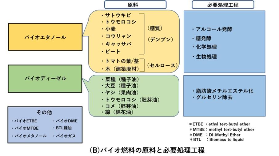バイオ燃料の原料と必要処理工程