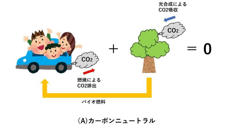 バイオ燃料とカーボンニュートラル