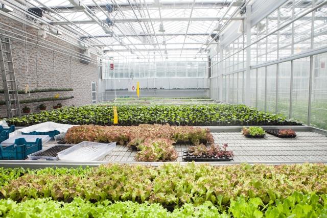 都市農業における植物工場セミナー