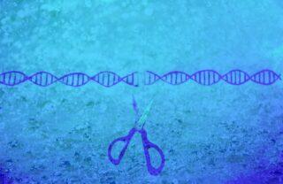 ゲノム編集技術の基礎と最先端の医療応用セミナー