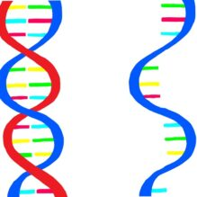 核酸医薬におけるDDSの基礎から最前線まで【提携セミナー】