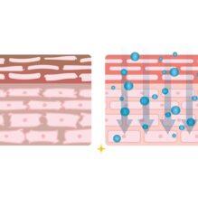 皮膚測定の基礎および定量的評価・官能評価のポイント《皮膚のしっとり感、キメ、色調等の評価方法》【提携セミナー】
