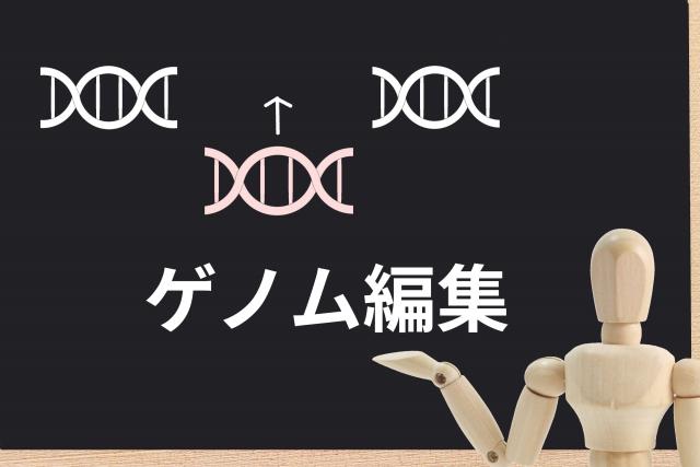 ゲノム編集の基礎_実践