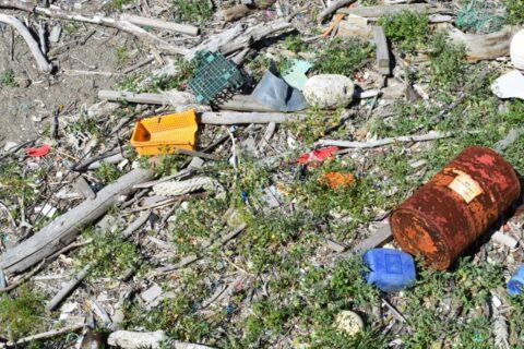 マイクロプラスチック問題の実態・影響評価とその除去・回収技術セミナー