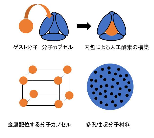 人工酵素のモデル構築例