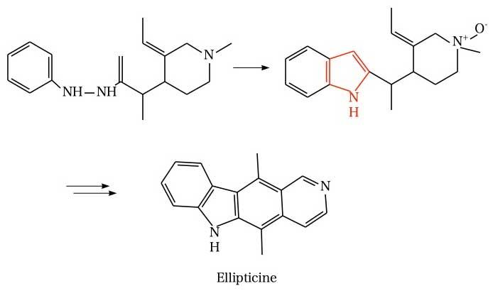Fischer indole synthesis(Ellipticin)