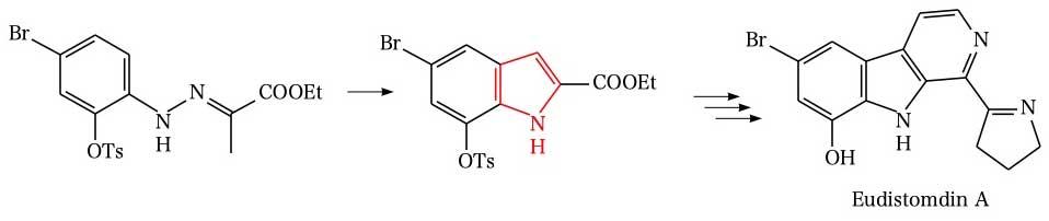 Fischer indole synthesis(Eudistomdin A)