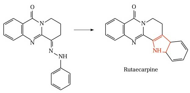 Fischer indole synthesis(Rutecal pin)