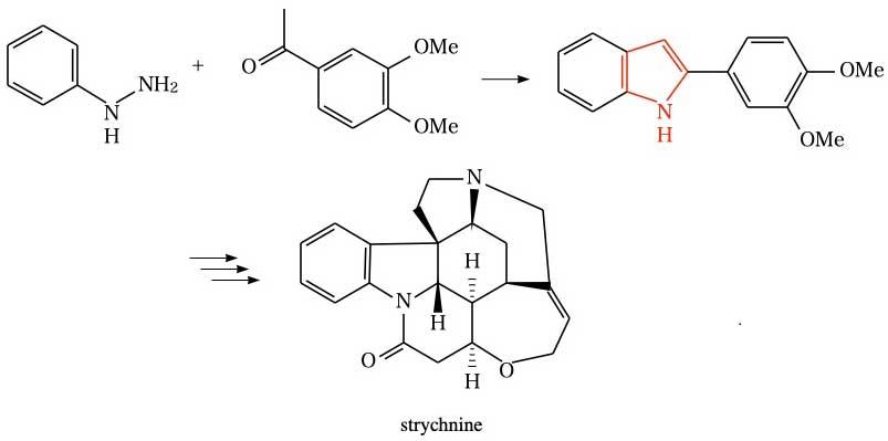 Fischer indole synthesis(Strychnine)