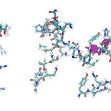 ペプチド医薬品・原薬の製造およびペプチドの合成・分析について【提携セミナー】
