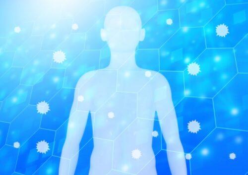 薬物動態の基礎と臨床応用